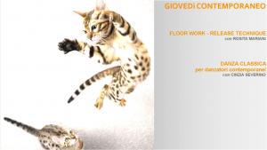 floorwork e classico
